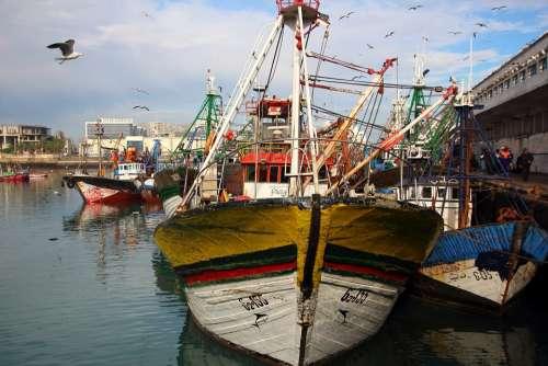 Port Casablanca Boat