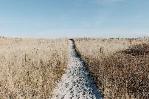 Prairie Path Field Scenic Natural Adventure