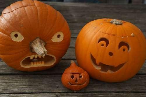 Pumpkin Pumpkin Face Halloween Face Autumn Fun