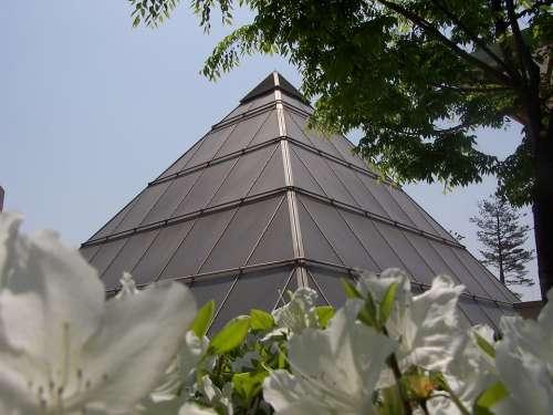 Pyramid Flowers Architecture Balance Harmony Shape