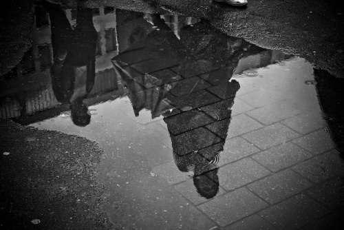 Rain Puddle Water Mirroring Wet Weather Raining