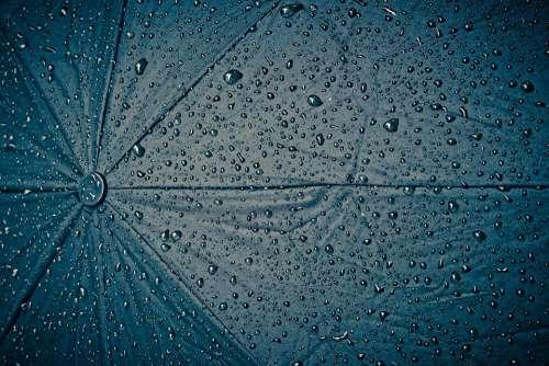 Rain Screen Umbrella Raindrop Wet Weather