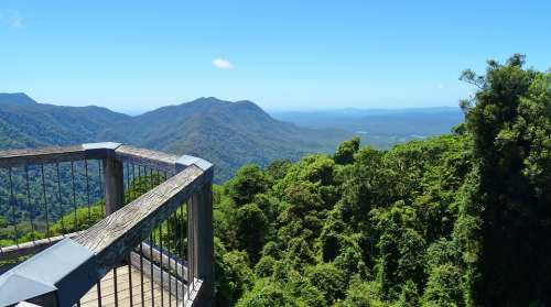 Rain Forest Lookout Vista Forest Plateau Vacation