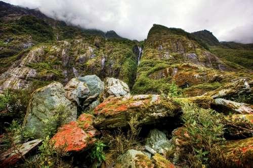 Rainforest New Zealand South Island Waterfall