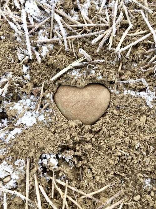 Random Nature Heart Romantic Beautiful Arable