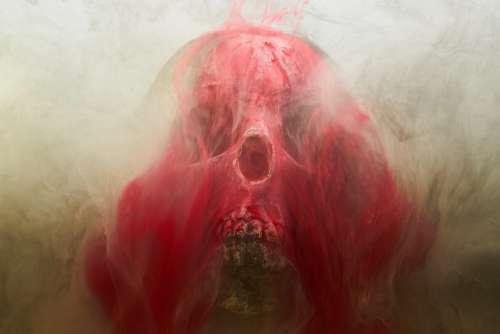 Red Skull Dry Head Skeleton Dead Death Bone Dark