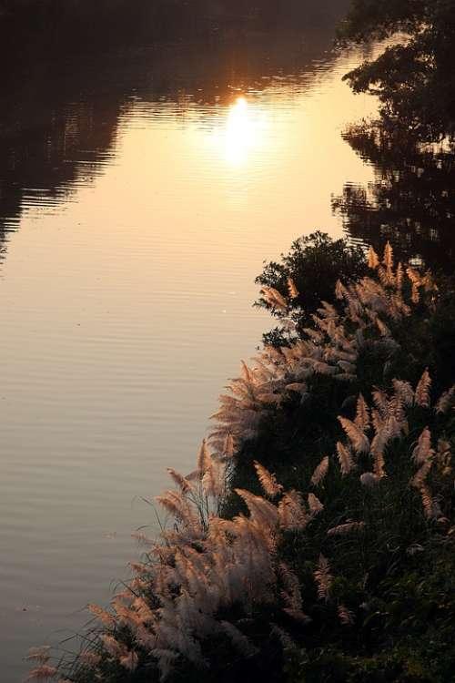 Reflections River Bank Sunbeam Light Soft Light