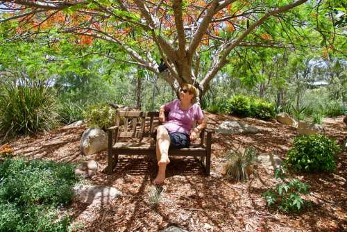 Relax Nature Quiet Leisure Meditation Woman Girl