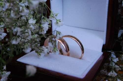 Rings Wedding Wedding Rings Love Marriage Gold