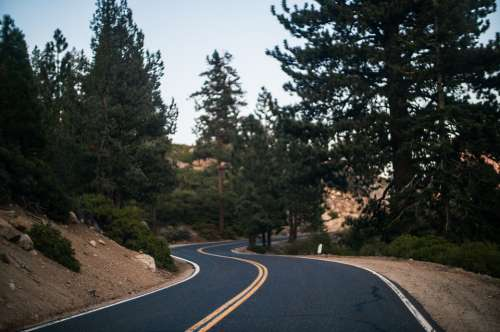 Road Bend Curve Highway Hilly Hill Road Forest