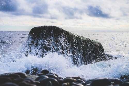 Rock Water Sea Ocean Wave Wet Power Splash
