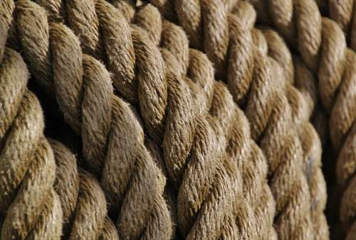 Rope Ropes Knot Woven Close Up Cordage Leash Dew