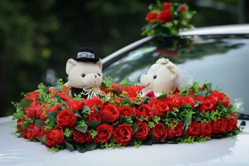 Rose Beer Flower Red Wedding