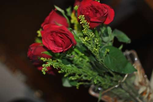 Rose Flower Red Green Love Decoration Bunch