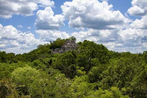 Ruins Of Calakmul Pyramid Mayan Ruins