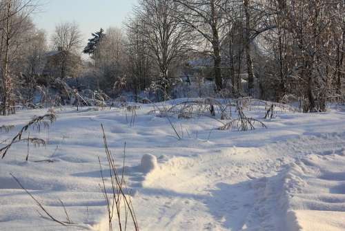 Russia Winter Morning
