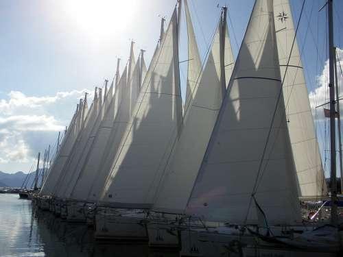 Sailing Boats Yacht Boating Sea Sail Sailboat