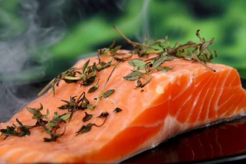 Salmon Cooked Food Fish Herbs Delicious Red