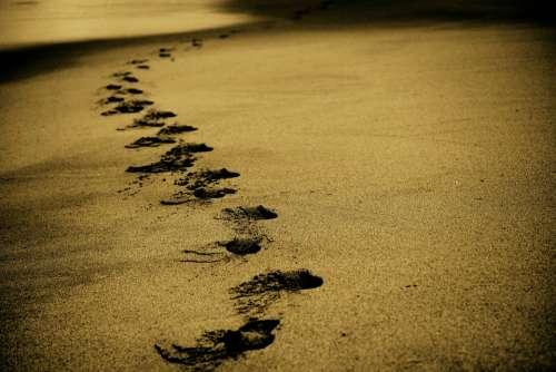 Sand Footsteps Footprints Beach Coast Walk Ocean