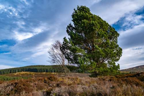 Scotland Uk Britain Landscape Scottish Nature Sky