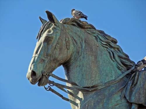 Sculpture Horse Paloma Statue Bronze
