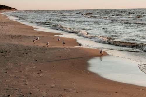 Sea Beach Holidays Water Landscape Summer