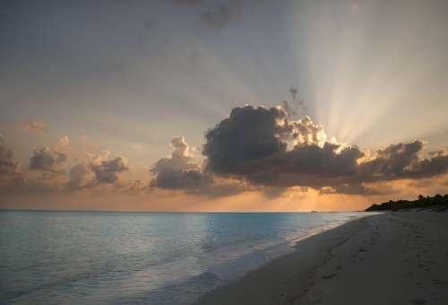 Sea Ocean Island Paradise Maldives Beach Sand