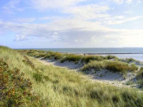 Sea Island Dunes Sylt Beach North Sea Nature