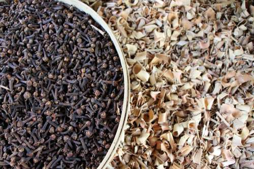 Seeds Carnation Spices