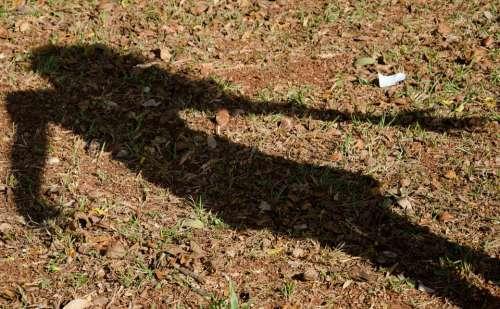 Shadow Girl Stub Grass