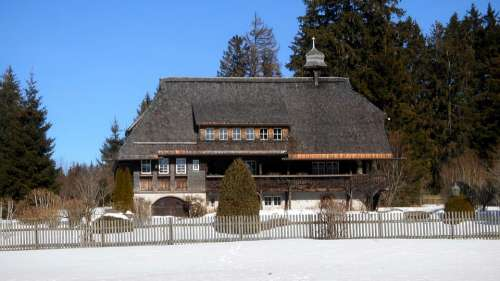 Single Family Home Black Forest Forest House House