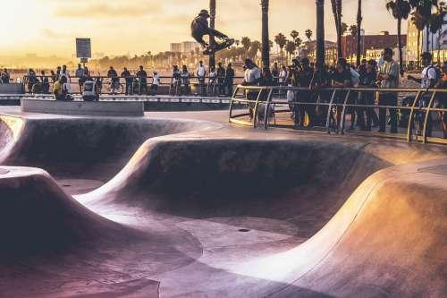 Skateboarding Park Skateboard Skateboarder Skater
