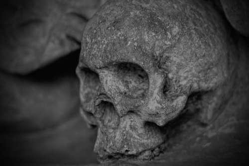 Skull And Crossbones Skull Dead Skeleton Mortal