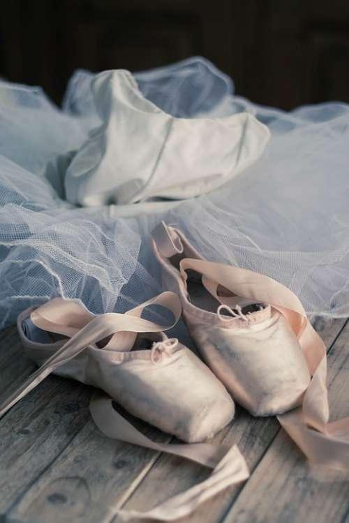 Slipper Dance Ballet Dancer Foot Classic Dance
