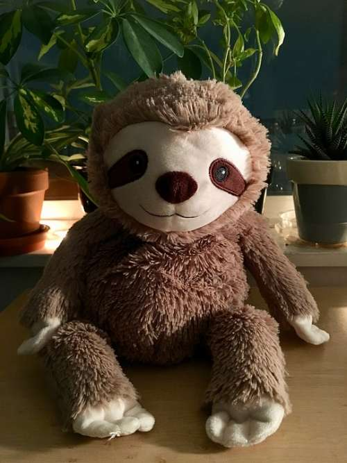 Sloth Stuffed Animal Cute Evening Plush Brown
