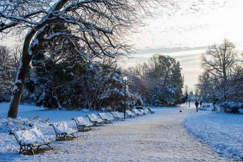 Snow Paris Winter France Cold City Trees
