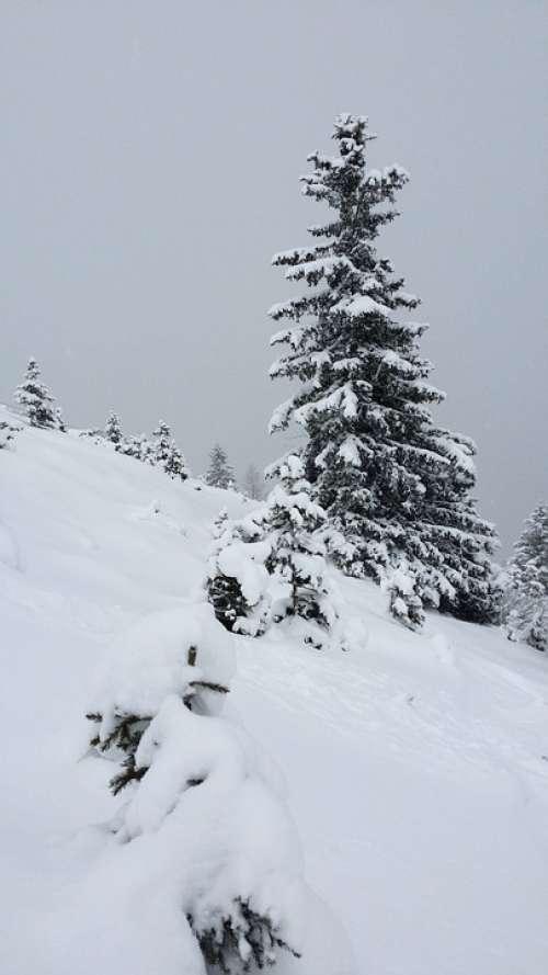 Snow Winter Alpine Cold White Mountains Austria