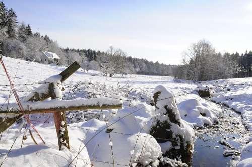 Snow Landscape Forest Sun Bach