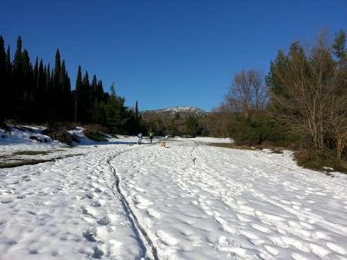 Snow Trail White Winter Trail Snow Snowy