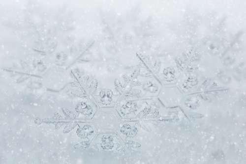 Snowflakes Border White Space Text Space Winter