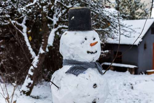 Snowman Winter Snow Cold White Decoration Funny