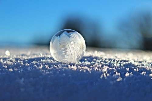 Soap Bubble Bubble Eiskristalle Snow Winter Frozen