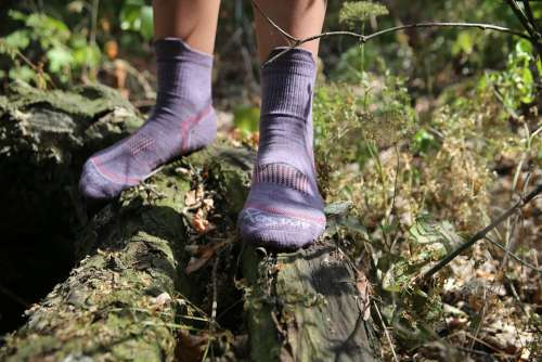 Socks Nature Forest Outdoor Feet Tourism One