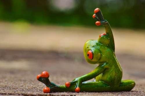 Sport Gymnastics Frog Funny Fitness Fit Sporty