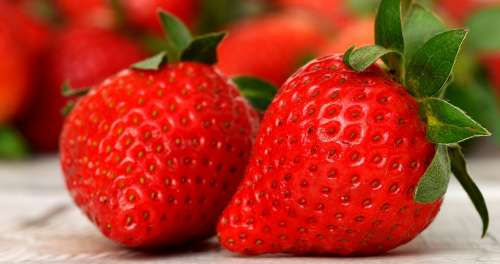 Strawberries Delicious Fruit Food Fruits Sweet