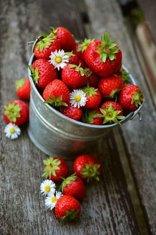Strawberries Fruit Delicious Food Eat Berries