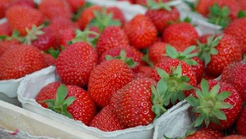 Strawberries Berries Fruit Close Up Eat Sweet