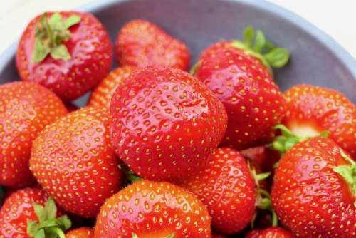 Strawberry Strawberries Summer Fruit Mat Cute