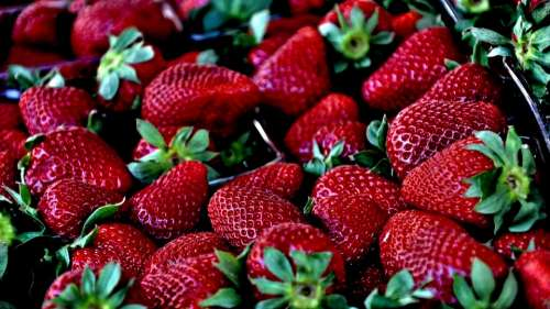Strawberry Red Macro Berries Fruit Ripe Delicious