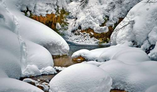 Stream Snow Water River Branches